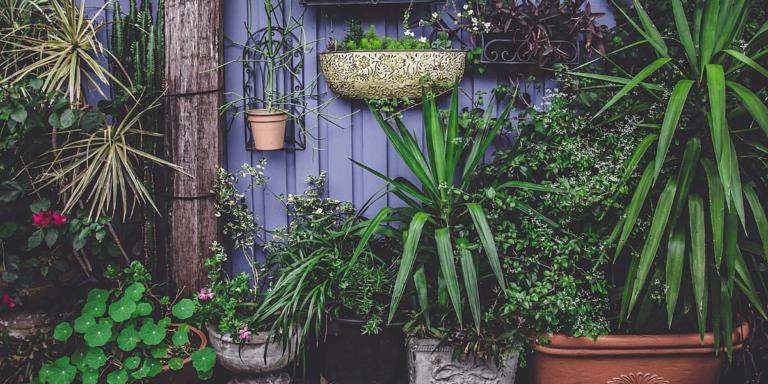 Essential Spring Plumbing Maintenance Checks